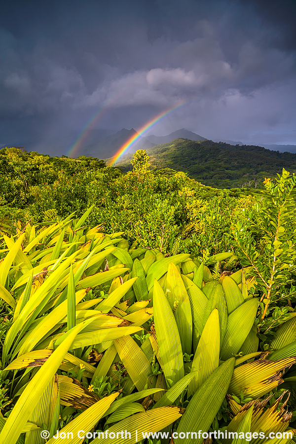 Hanalei Ridge Sunrise Rainbow 3